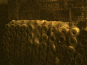 Botellas de cava con telarañas de polvo, es la primera edición