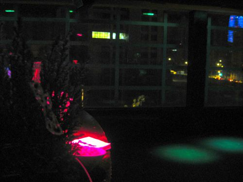 Sala con luces y algunos empleados de Bershka