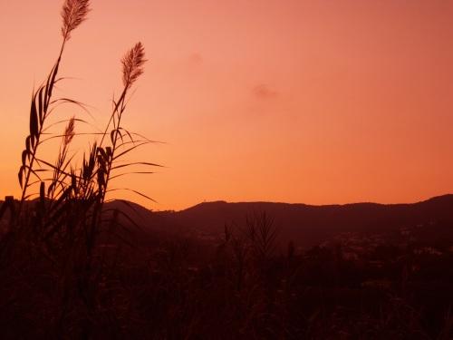 Puesta de sol desde una masia de Ànima