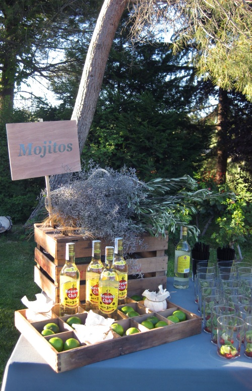 Barra de Gin & Tonic y Mojitos