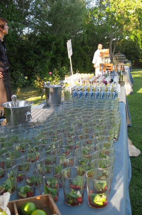 Barra de Gin & Tonic y Mojitos by Ànima catering
