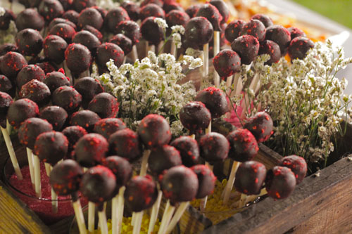 Cake pops de chocolate con frambuesa en cestas