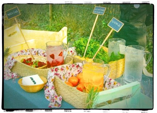 Barra de Aguas en una boda Ànima. Naranja, limón y menta y fresas