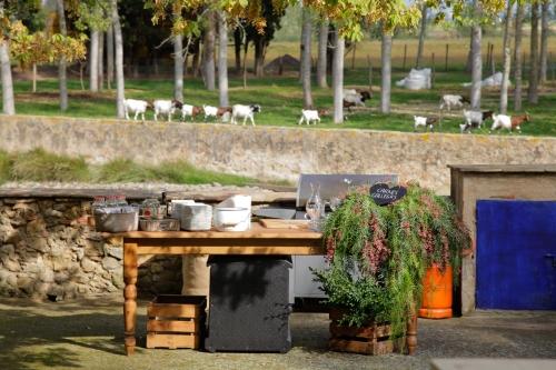 Buffet de carnes gallegas