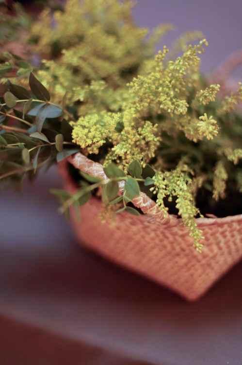 Plantas silvestres en una boda romántica by Ànima catering_Palau Moxó