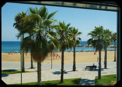 Barceloneta foodie #7